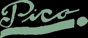 Pico_logo_Rentegnet_Logo_groen-1024x451